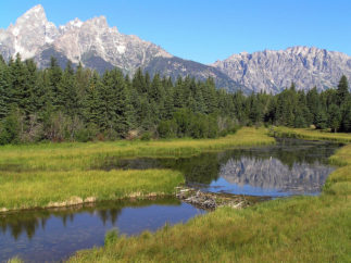 Grand Teton National Park with beaver dam