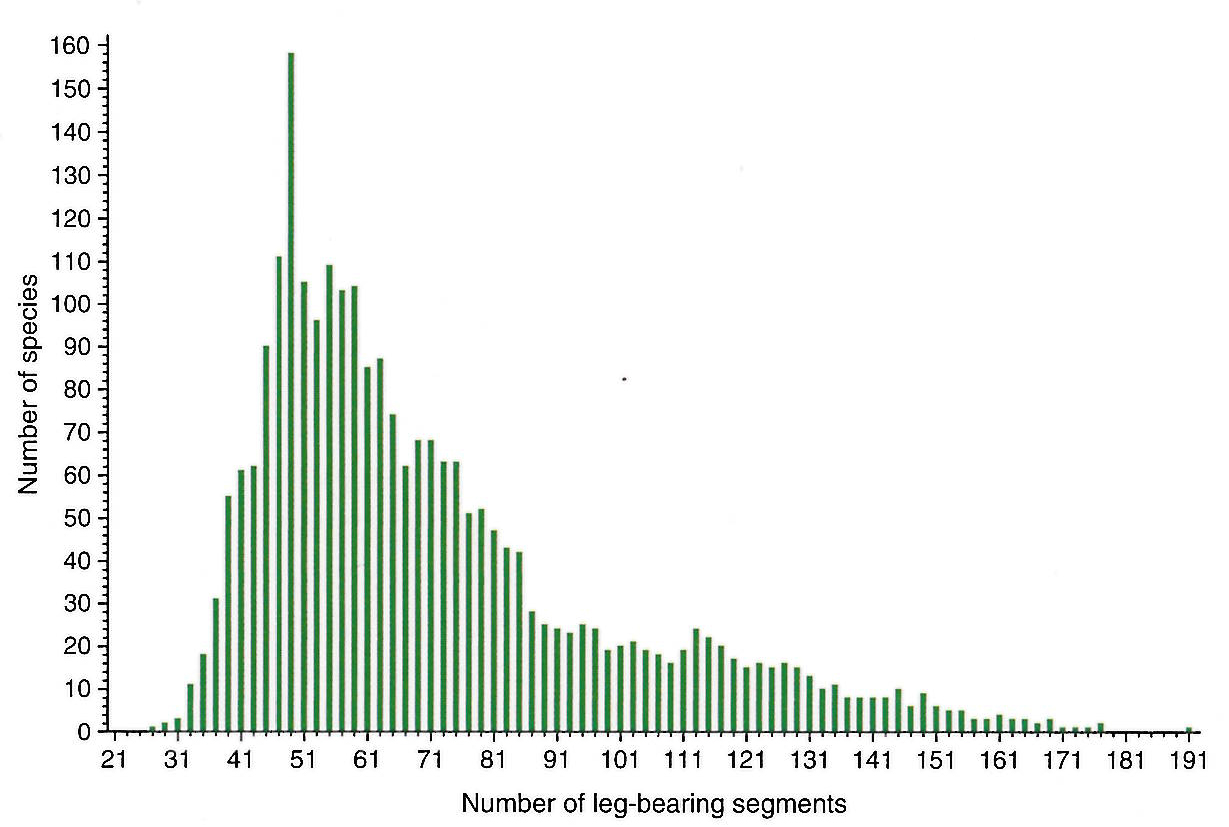 histogram showing a right-skewed distribution of segment number across centipede species