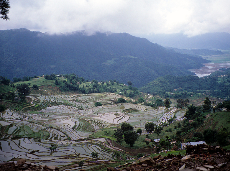 view of steep paddy terraces