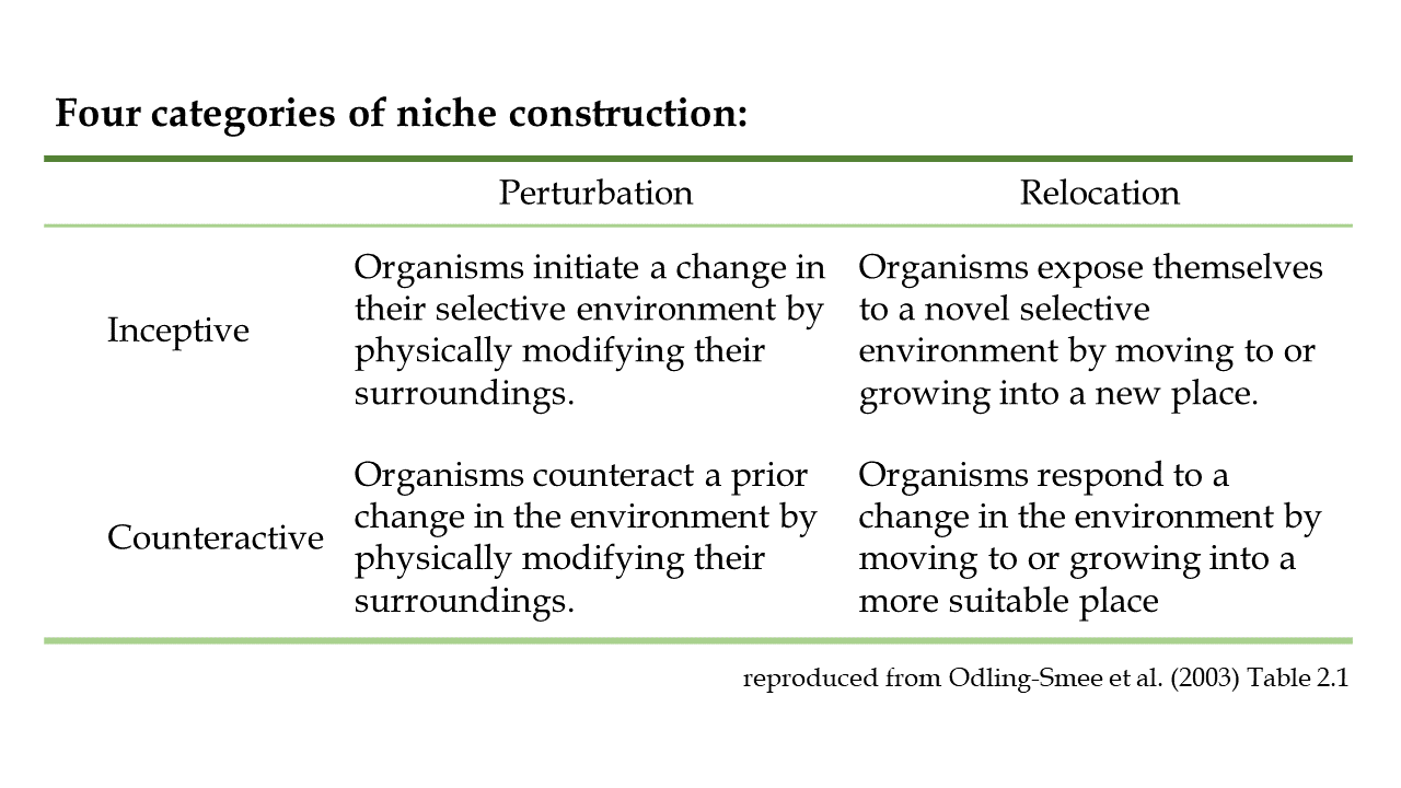 table with types of niche construction